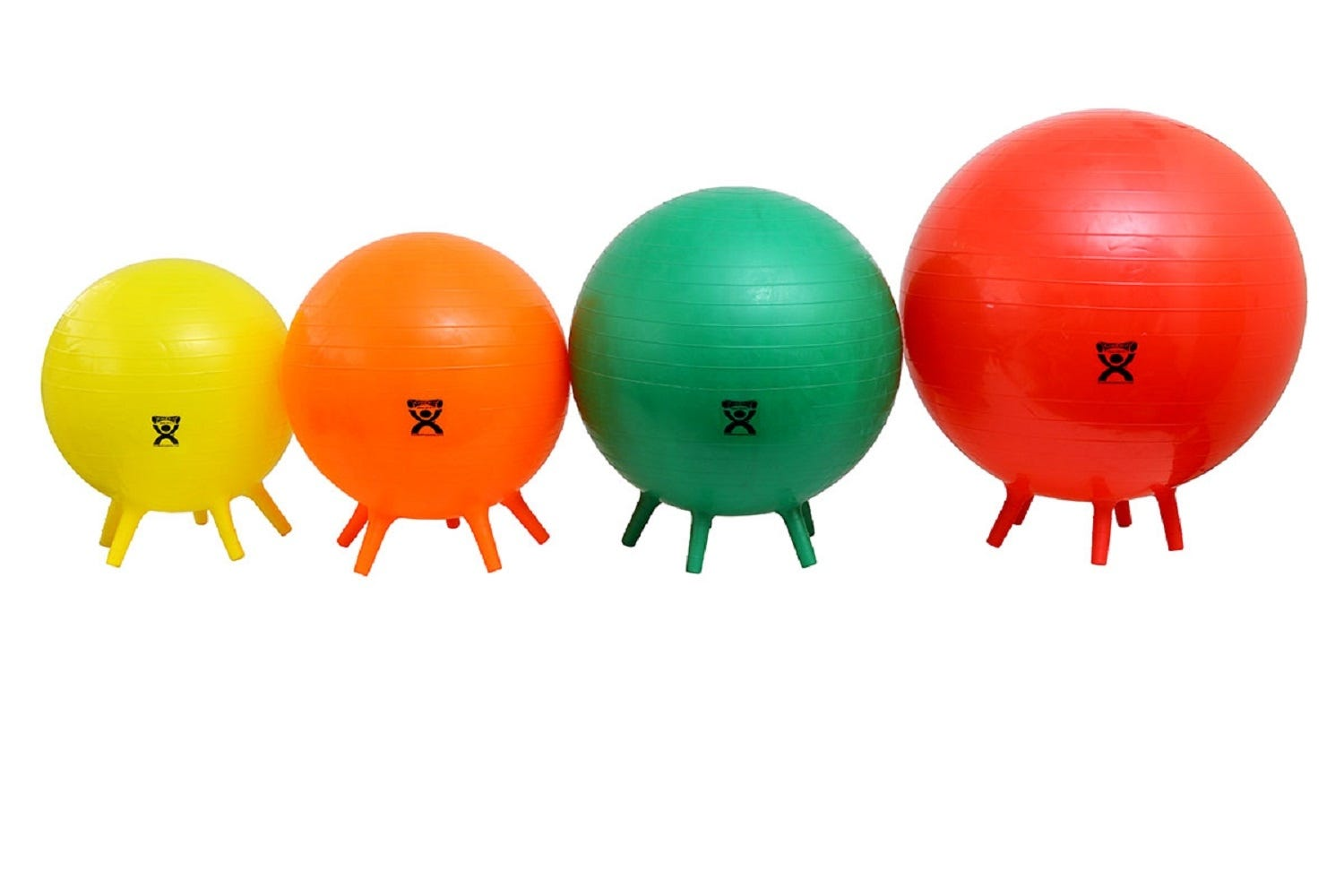 Exercise Ball with Stability Feet