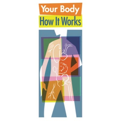 Your Body: How It Works Pamphlet