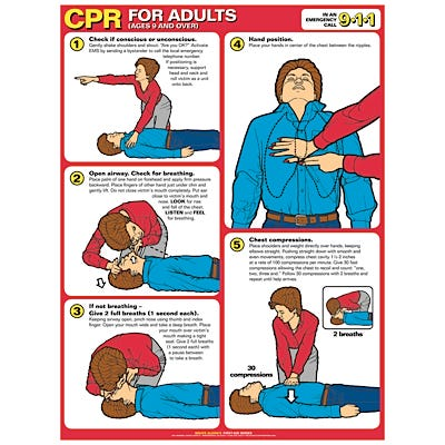CPR Chart, Adult