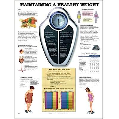 """Anatomical Chart 22"""" x 28"""" - Maintaining a Healthy Weight"""