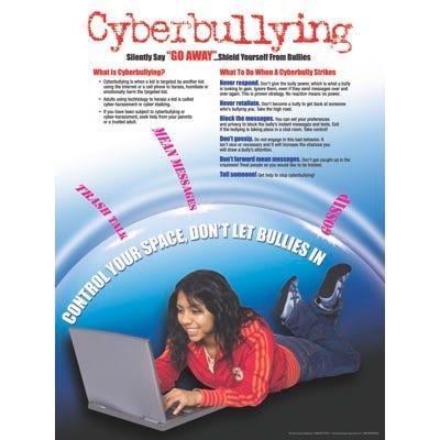 "Cyberbullying Poster 18"" x 24"""