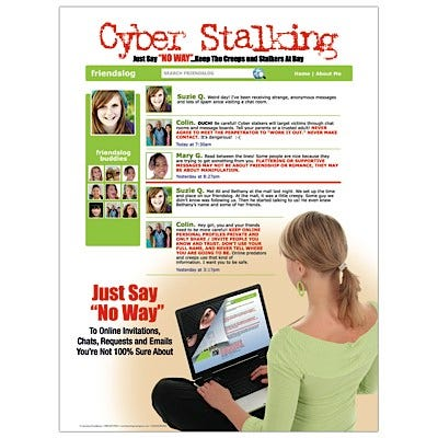 """Cyber Stalking 18"""" x 24"""" Laminated Poster"""