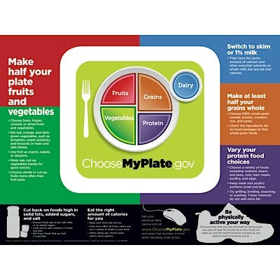 """USDA MyPlate 18"""" x 24"""" Laminated Poster and Tear Pad"""