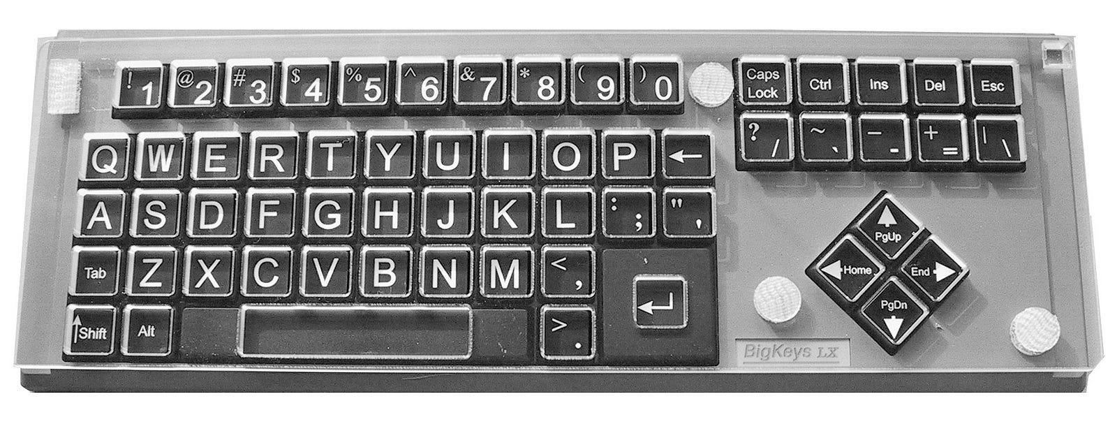 BigKeys LX Keyguard